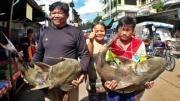 ชาวบ้านริมโขง จับปลาแค้ยักษ์ หนักร่วม 40 กิโล ฟันเงินนับหมื่น