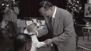 ย้อนชม พระบาทสมเด็จพระปรมินทรมหาภูมิพลอดุลยเดช ทรงเล่นกับสุนัขทรงเลี้ยง