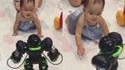เมื่อเป่าเปา เจอหุ่นยนต์ที่พ่อบี้ส่งมาให้จากจีน
