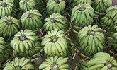 กล้วยหอมทอง ออร์เดอร์ทะลักรับตรุษจีน ราคาพุ่งหวีละ 100
